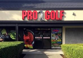 feedback-pro-golf-bellevue
